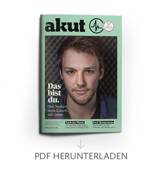 341_PDF-Download-Button